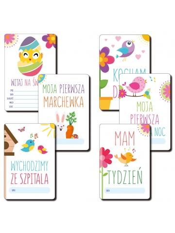 Mój Pierwszy Rok Życia Ptaki Bliźniaki 32 karty